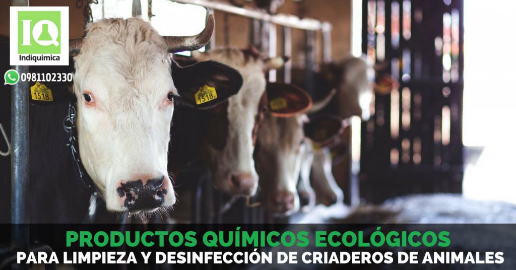 Productos Químicos para Limpieza y Desinfección de Criaderos de Animales